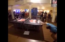 That's Is Nice Ping Pong Soccer