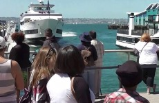 Whale Watching Boat Crashesing Into San Diego Dock