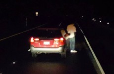 drunk-driver-needs-a-toilet-break-while-driving