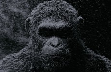 war-for-the-planet-of-the-apes
