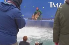 Dog Is Forced Into Turbulent Waters For A Movie